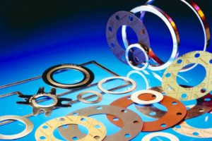 What is a Flange Gasket ?