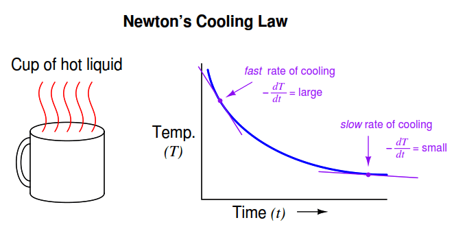 Newton's Law of Cooling -1