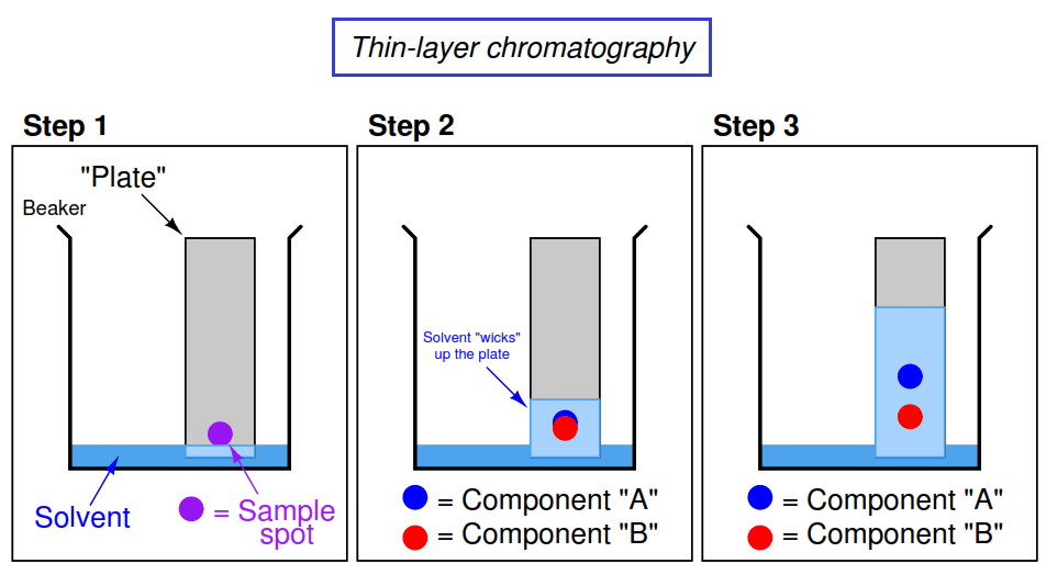 thin layer chromatography research paper The radiochemical purity of the (99m)tc-nhadg complex was measured by instant thin layer chromatography (itlc) and paper chromatography (pc), without any notable decomposition at room temperature over a period of 4h.