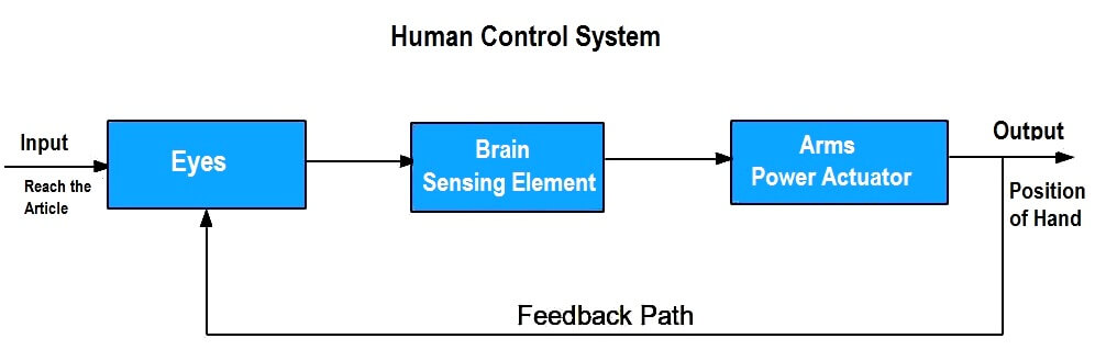Human Control System